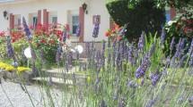 Jolie Maison et son gite indépendant proche du Hâble D'Ault.